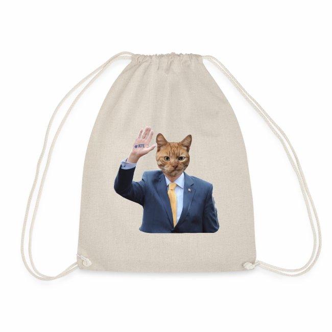RTE ginger cat