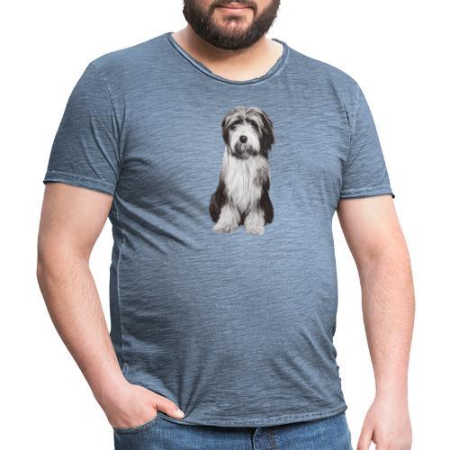 Bearded collie - Vintage-T-shirt herr