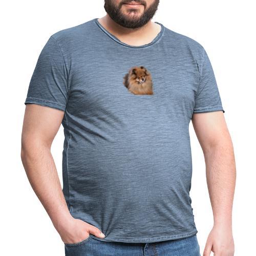 Pomeranian - Vintage-T-shirt herr