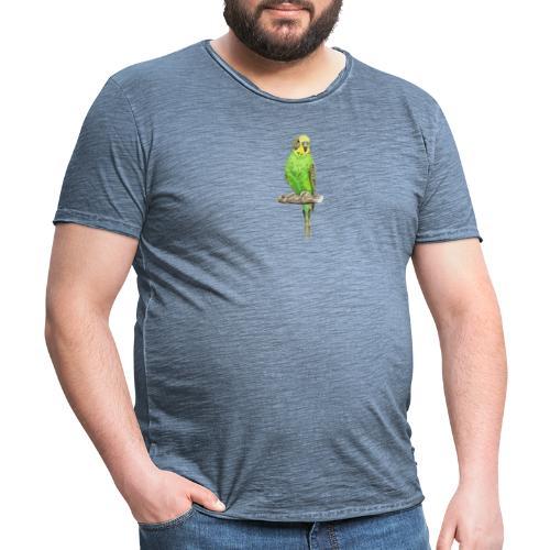 Green bird amazon perico - Camiseta vintage hombre