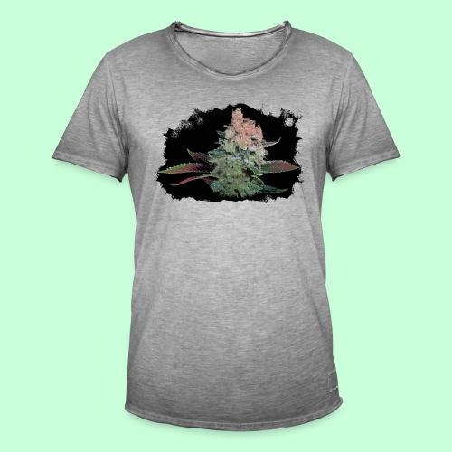 Pflänzchen png - Männer Vintage T-Shirt