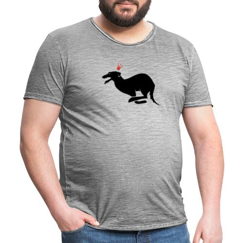 Galgo rey - Camiseta vintage hombre