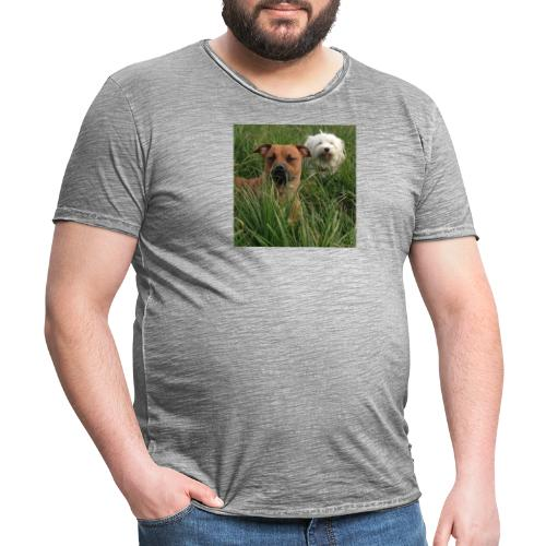 15965945 10154023153891879 8302290575382704701 n - Mannen Vintage T-shirt