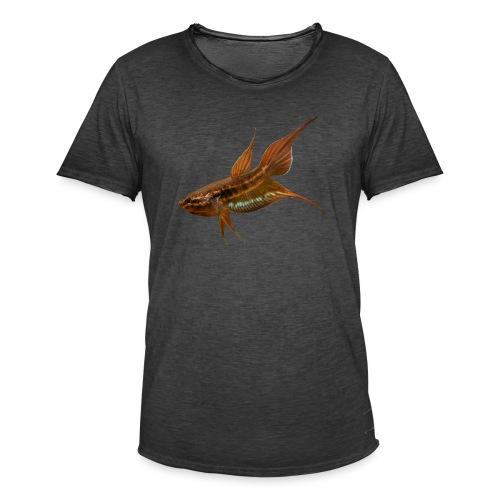 Betta dimidiata - Men's Vintage T-Shirt