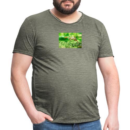 Żołw aportujący frisbee - Koszulka męska vintage