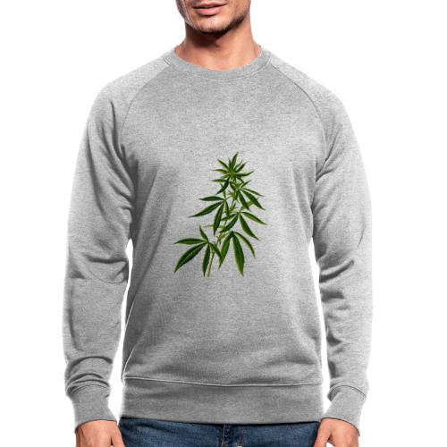 Hanf Hemp Weed Ganja Bekleidung - Männer Bio-Sweatshirt