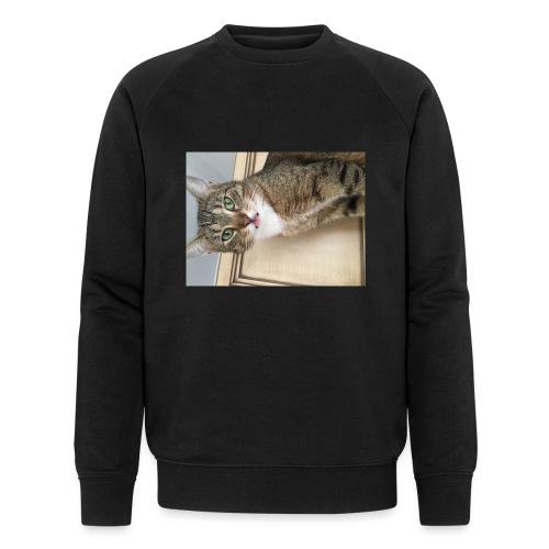 Kotek - Ekologiczna bluza męska