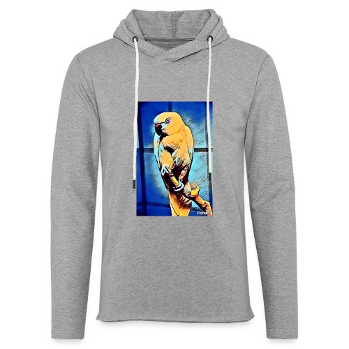 Bird in color - Kevyt unisex-huppari