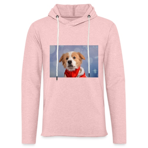 DSC_2040-jpg - Lichte hoodie unisex