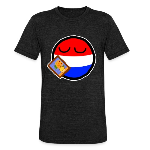 Netherlandsball - Unisex Tri-Blend T-Shirt by Bella & Canvas
