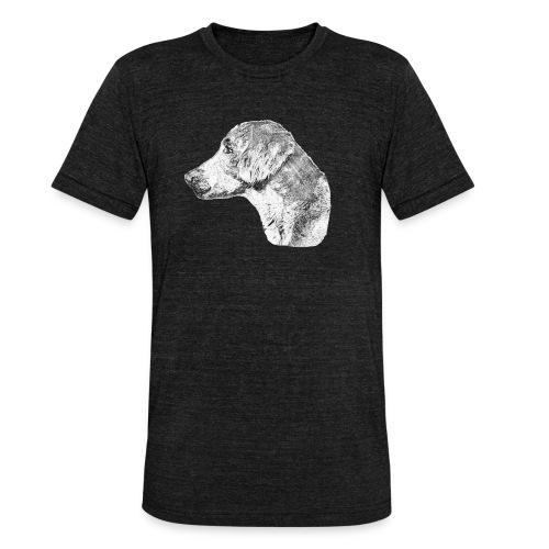Langhaar Weimaraner - Unisex Tri-Blend T-Shirt von Bella + Canvas