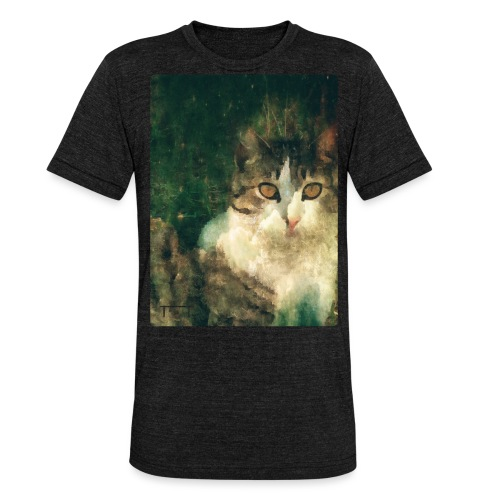 № 18 [ingenium] - Unisex Tri-Blend T-Shirt by Bella & Canvas
