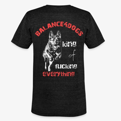 Balance4dogs - king of fucking everything - DS - Unisex Tri-Blend T-Shirt by Bella & Canvas