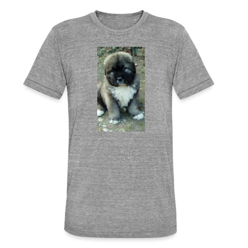 Kolekcja Kazan - Koszulka Bella + Canvas triblend – typu unisex