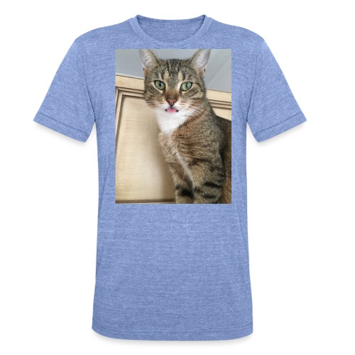 Kotek - Koszulka Bella + Canvas triblend – typu unisex