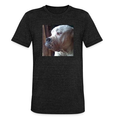 Mirada Perritus - Camiseta Tri-Blend unisex de Bella + Canvas