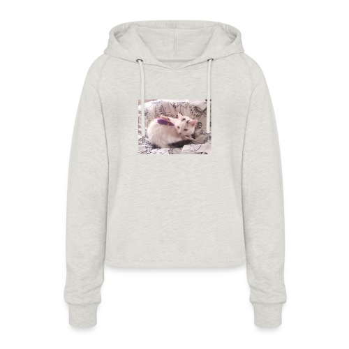 CAT SURROUNDED BY MICE AND BUTTERFLIES. - Women's Cropped Hoodie