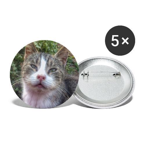 Katze Max - Buttons groß 56 mm (5er Pack)