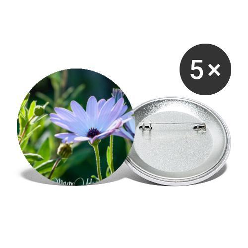 Dimorfoteca - Paquete de 5 chapas grandes (56 mm)
