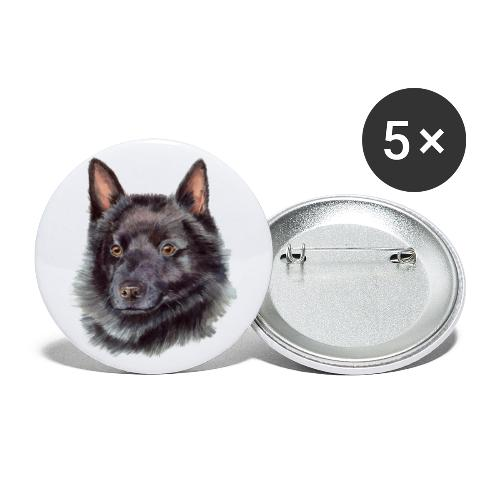 schipperke - M - Buttons/Badges stor, 56 mm (5-pack)