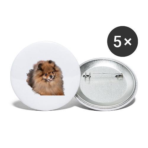 Pomeranian - Stora knappar 56 mm (5-pack)