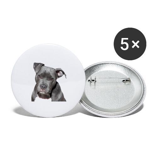 Pitbull Terrier américan - Lot de 5 grands badges (56 mm)