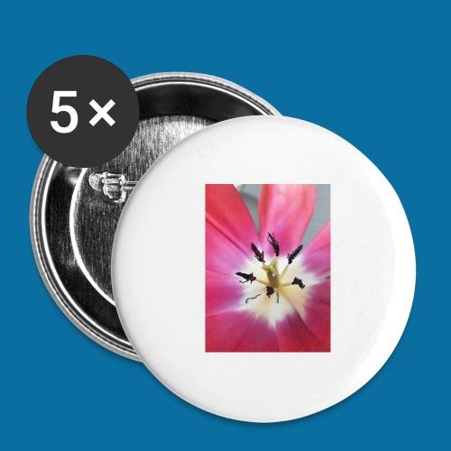 Tulipe Darwin - Lot de 5 grands badges (56 mm)