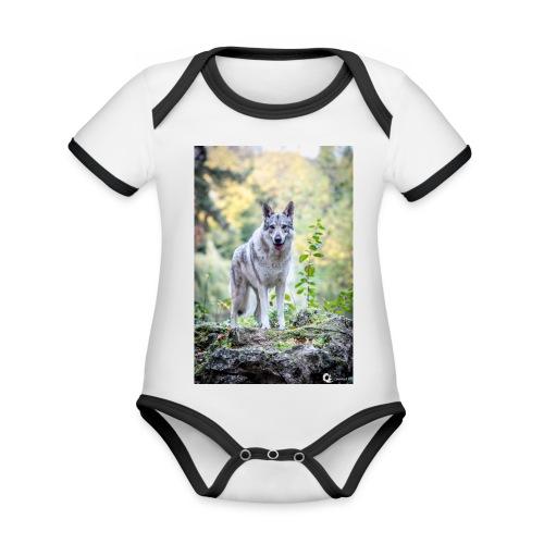 La Tanière des Chiens-Loups - Body Bébé bio contrasté manches courtes