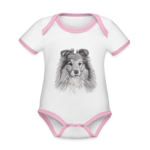shetland sheepdog sheltie - Kortærmet økologisk babybody i kontrastfarver