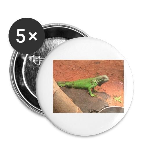The Leguan - Buttons klein 25 mm (5er Pack)