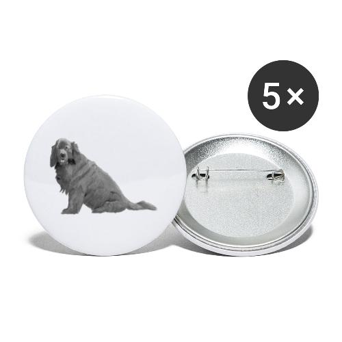newfoundland - Buttons/Badges lille, 25 mm (5-pack)