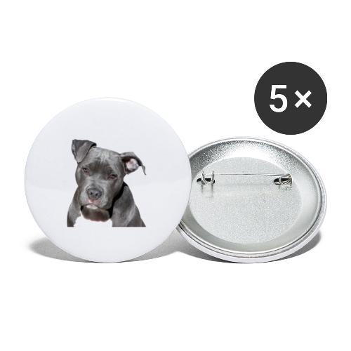 Pitbull Terrier américan - Lot de 5 petits badges (25 mm)