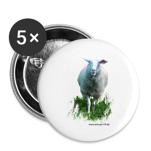Gemaltes Entrup Schaf - Buttons klein 25 mm (5er Pack)