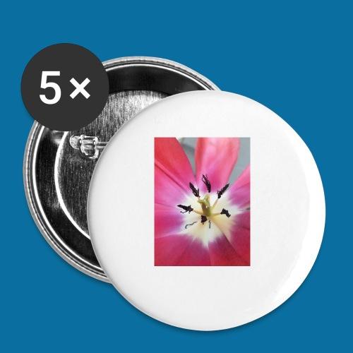 Tulipe Darwin - Lot de 5 petits badges (25 mm)