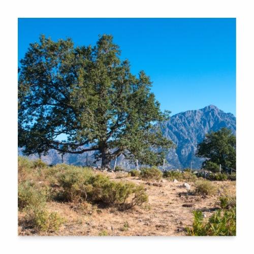 Montagne Corse - Poster 60 x 60 cm