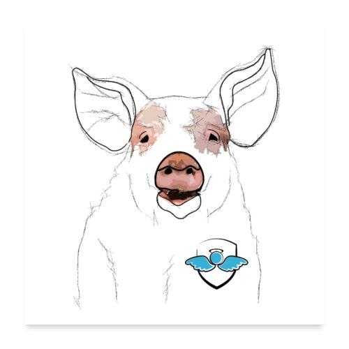 Das Schwein (Poster) - Poster 60x60 cm