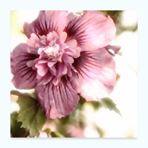 Pink flower watercolor minimalism - Poster 24 x 24 (60x60 cm)