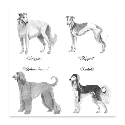 Hounds poster - Poster 60x60 cm