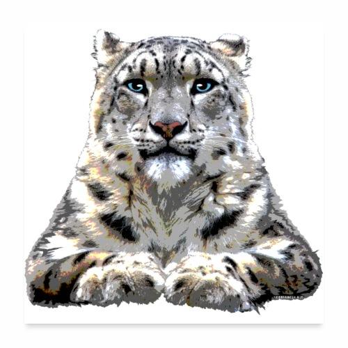 FP10 57 Snowleopard - Juliste 60x60 cm