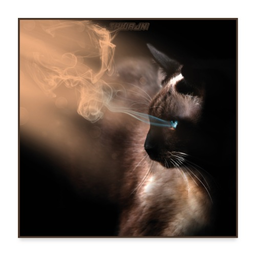 The Magical Cat - Poster 60x60 cm