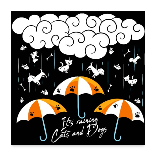 It's raining cats and dogs - Poster 60 x 60 cm