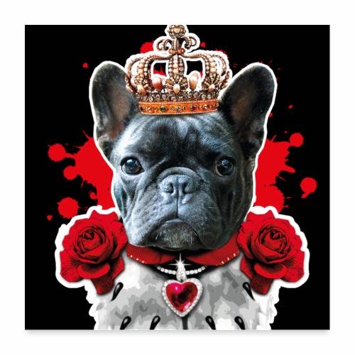 01 French Bully Bulldog King Queen Mundschutz - Poster 60x60 cm