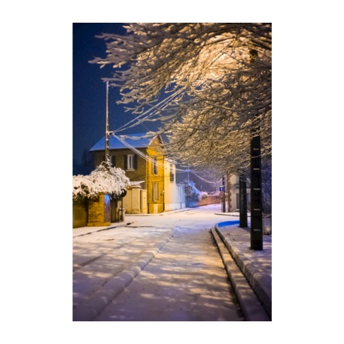 Neige nocturne - Poster 20 x 30 cm
