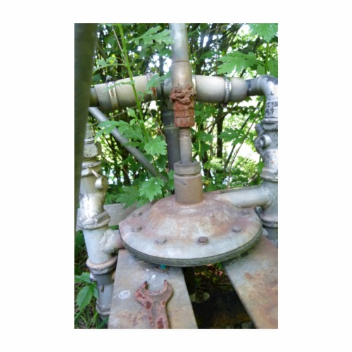 alte Pumpe in Natur - Poster 20x30 cm