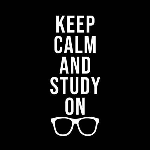 Keep Calm and Study On - Poster 20x30 cm