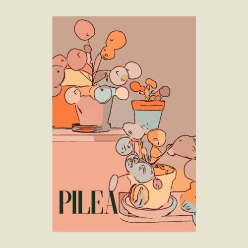 Cool pilea - Poster 20x30 cm