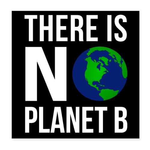 There Is No Planet B Poster (White Font Version) - Poster 20x20 cm