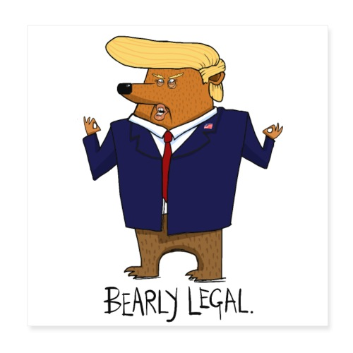 Donald Trump Funny Bear Gift - Poster 20x20 cm