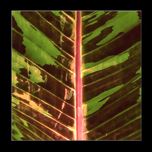 Bananas leaf watercolor - Poster 8 x 8 (20x20 cm)