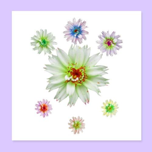 zauberhafte bunte Blumen, Blüten, Blume, Natur - Poster 20x20 cm